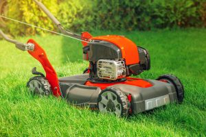 Lawn Mower Disposal